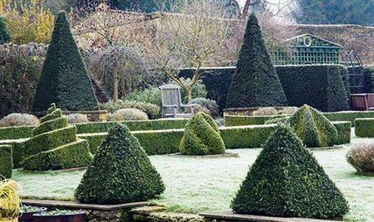 Amazing Winter Garden Landscape 47