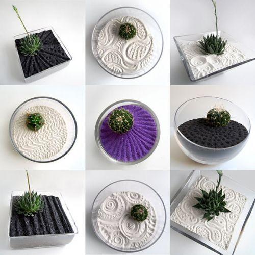 Mini Zen Garden Ideas