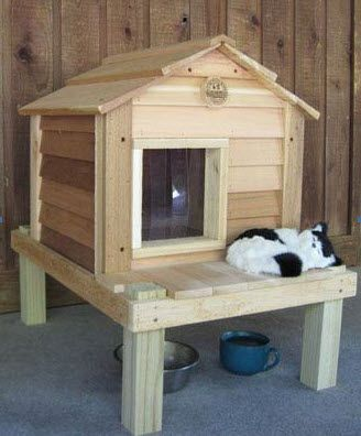 Outdoor Cat House For Winter