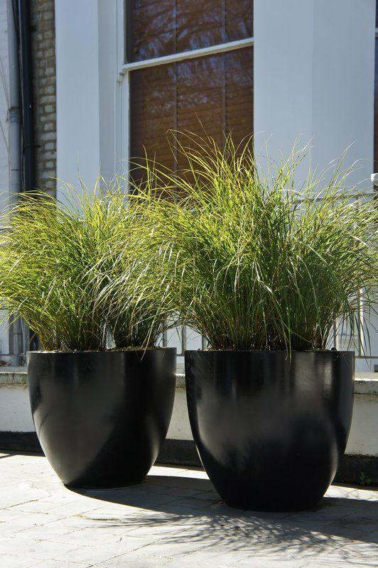 Large Outdoor Plant Pots
