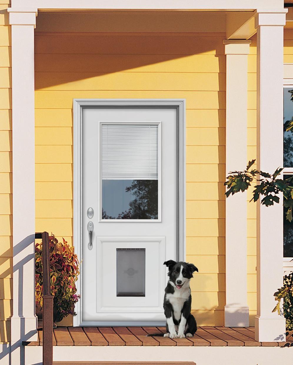 Exterior Door With Dog Door