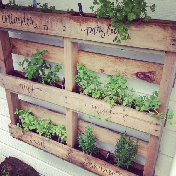 Wooden Pallet Garden Ideas