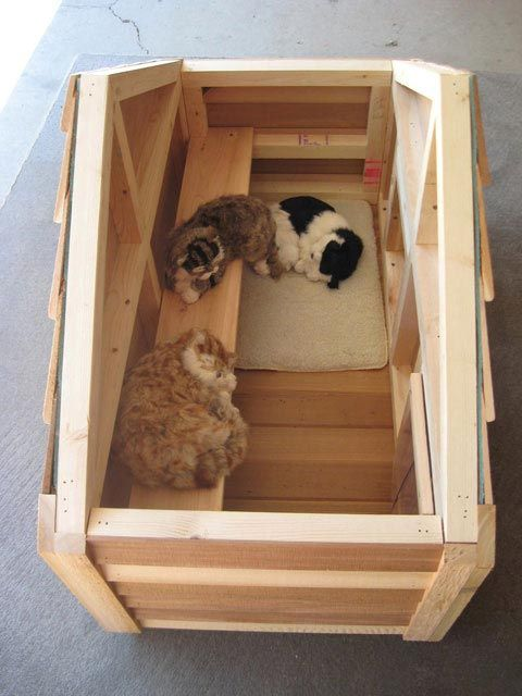 Insulated Outdoor Cat House