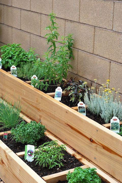Small Herb Garden Ideas